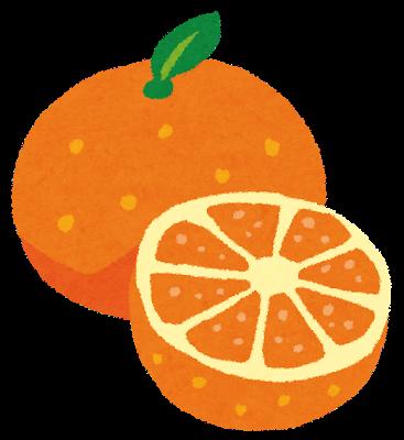 オレンジ地肌シャンプー