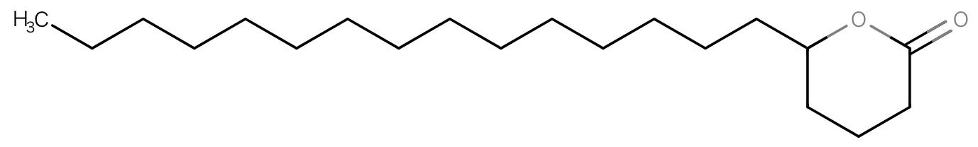 メドウフォーム-δ-ラクトン Fプロテクト ヘアシャンプー ベーシックタイプ