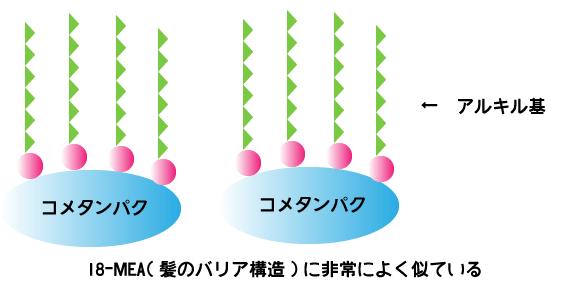 セテアラミドエチルジエトニウム加水分解コメタンパク ベルーガ ダメージリペア ヘアミルク