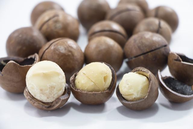 マカデミアナッツ油のイメージ
